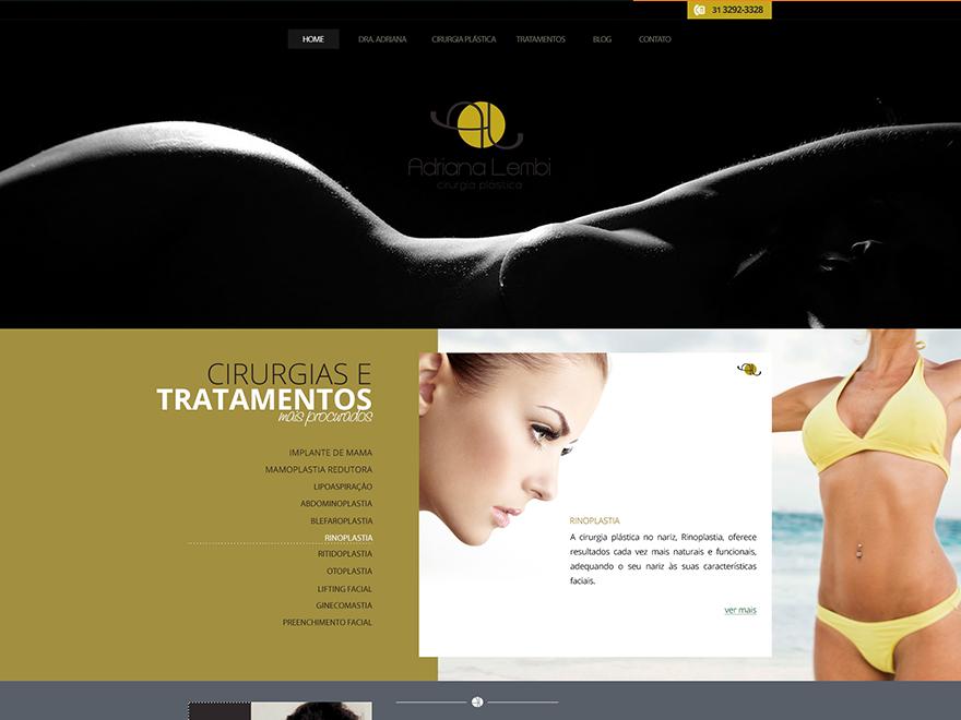 (c) Adrianalembi.com.br